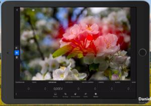 Copie EcranIPad 1 300x212 Adobe Lightroom Web et Lightroom Mobile