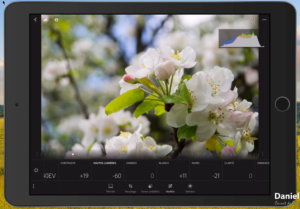 Copie EcranIPad 2 300x209 Adobe Lightroom Web et Lightroom Mobile