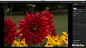 Copie EcranWeb 2 300x168 Adobe Lightroom Web et Lightroom Mobile