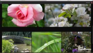 Copie EcranWeb 7 300x170 Adobe Lightroom Web et Lightroom Mobile