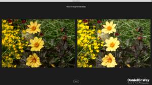 Copie EcranWeb 8 300x169 Adobe Lightroom Web et Lightroom Mobile