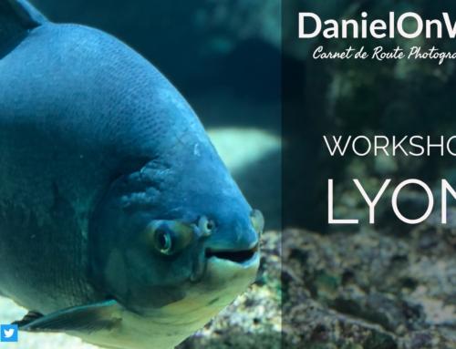 Workshop Lyon : Panoramique 180° et vidéo de l'aquarium tourné avec l'iPhone X