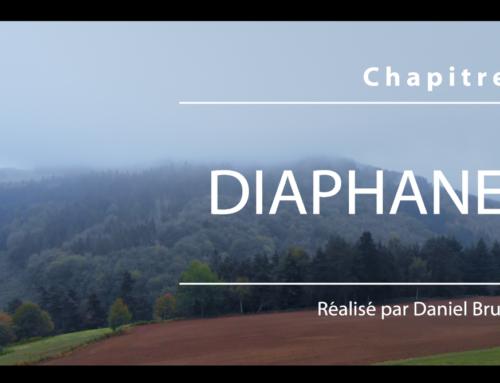 Diaphanes – Histoire de brouillard