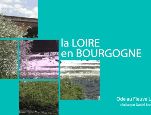 La Loire en Bourgogne
