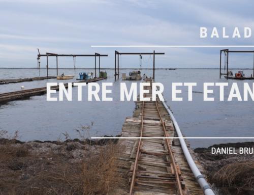 Balade entre Mer, Etangs et Canaux près de Sète, Mèze, Bouzigues, Frontignan, Palavas, Aigues-Mortes