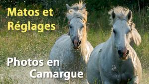 Couv Camargue2 300x169 Quel Matos et quels réglages pour photographier en Camargue ?