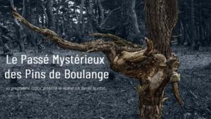 Pinatelle du Zouave 300x169 Nouvelle vidéo   Le passé mystérieux des pins de boulange